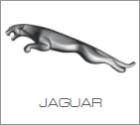 Delovi za Jaguar